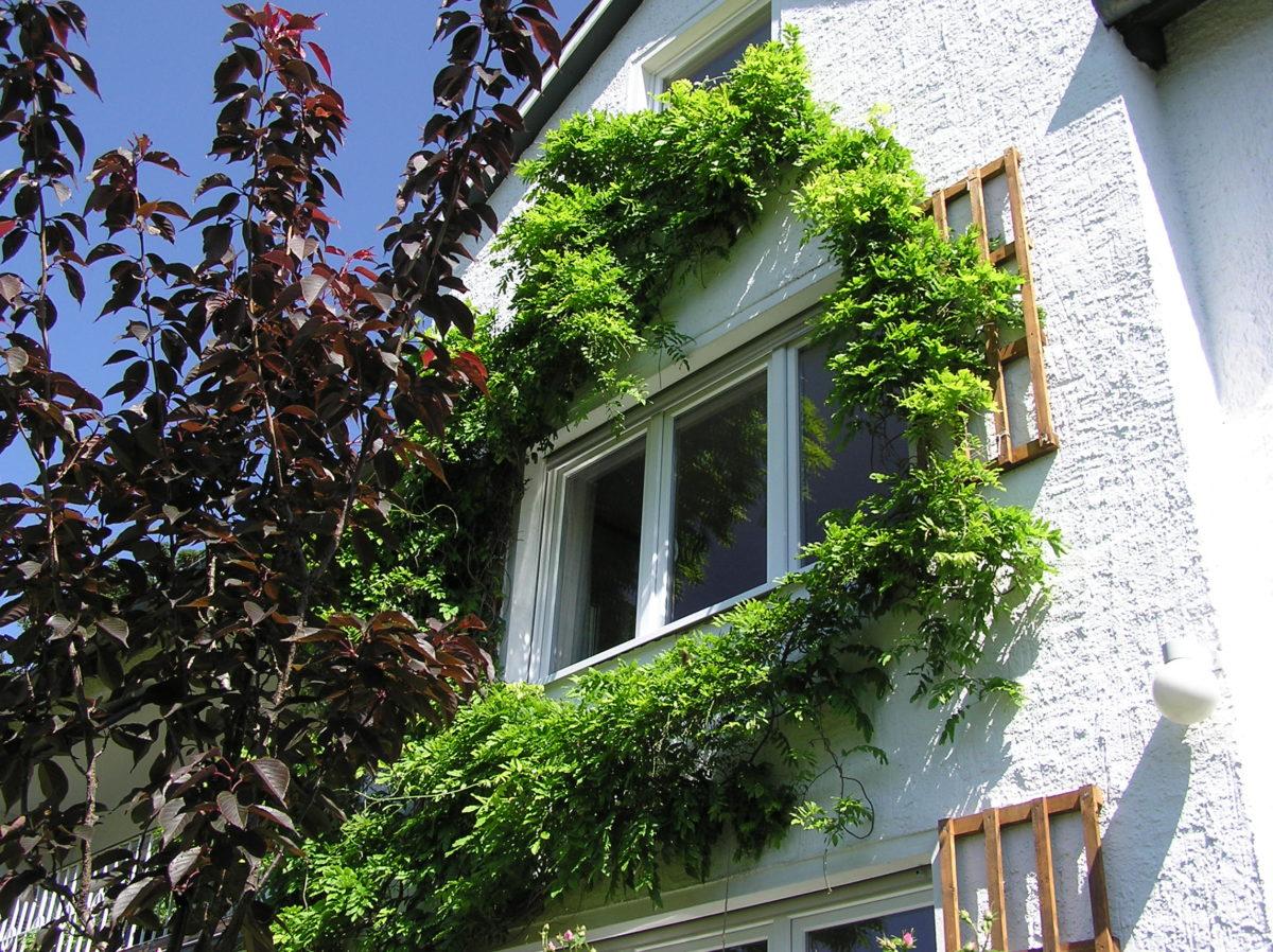 Passivhaus Fenster